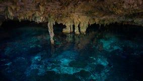 Dos Ojos de Cenote Foto de Stock
