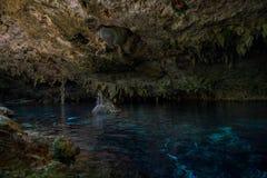 DOS Ojos de Cenote Fotos de archivo libres de regalías