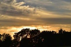 Dos orange de bleu de couleur d'or de coucher du soleil de crépuscule de silhouette d'arbres Image libre de droits