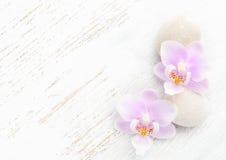 Dos orquídeas y piedras rosas claras en fondo lamentable de madera Imágenes de archivo libres de regalías