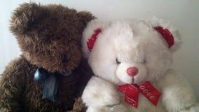 Dos osos de peluche Fotos de archivo