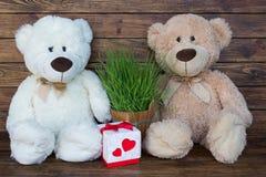Dos osos de peluche Foto de archivo libre de regalías