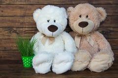 Dos osos de peluche Fotografía de archivo libre de regalías