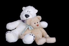 Dos osos de peluche agradables imagen de archivo libre de regalías
