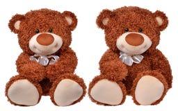 Dos osos de peluche marrones Imagen de archivo