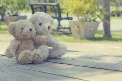 Dos osos de peluche que abrazan comida campestre Imagenes de archivo