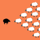 Dos ovejas Fotografía de archivo