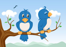 Dos pájaros Imagen de archivo