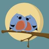 Dos pájaros Foto de archivo libre de regalías