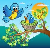 Dos pájaros azules con la ramificación de árbol Imagen de archivo libre de regalías