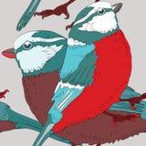 Dos pájaros con las plumas rojas y azules Modelo inconsútil Ejemplo del vector en fondo gris claro Imagen de archivo libre de regalías