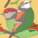 Dos pájaros con las plumas verdes y anaranjadas del color Modelo inconsútil Ejemplo del vector en fondo amarillo Imagen de archivo