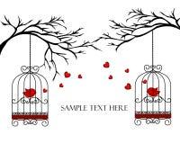 Dos pájaros de los amantes en jaulas en las ramas Imágenes de archivo libres de regalías
