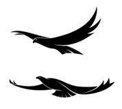 Dos pájaros de vuelo agraciados Fotografía de archivo libre de regalías