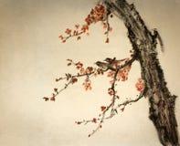 Dos pájaros en una rama del ciruelo Imagen de archivo