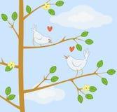 Dos pájaros lindos de la historieta en el árbol Imagenes de archivo