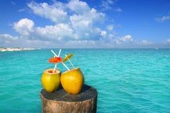 Dos paja fresca del agua del jugo de los cocos en el Caribe Fotos de archivo libres de regalías