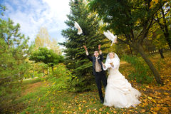 Dos palomas blancas Imagen de archivo libre de regalías
