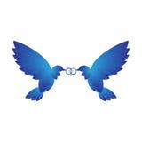 Dos palomas con los anillos Foto de archivo libre de regalías