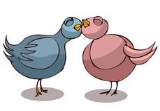 Dos palomas en amor Fotografía de archivo libre de regalías