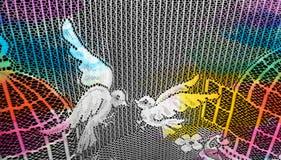 Dos palomas en el visillo fotografía de archivo libre de regalías