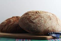 Dos panes de pan marrón del centeno Imagen de archivo