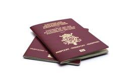Dos pasaportes belgas Imagenes de archivo