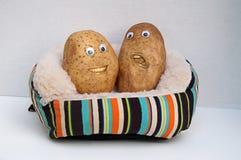 Dos patatas de sofá felices Foto de archivo libre de regalías