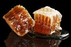 Dos pedazos de panal orgánico con la miel aislada en fondo negro Fotografía de archivo libre de regalías