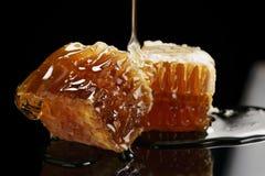 Dos pedazos de panal orgánico con la miel aislada en fondo negro Foto de archivo