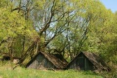Dos pequeñas casas en una madera fotografía de archivo