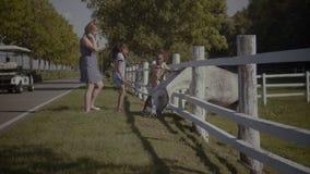 Dos pequeñas hermanas lindas que acarician un caballo en parque almacen de video