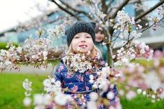 Dos pequeñas hermanas lindas que se divierten en jardín floreciente de la cereza Foto de archivo libre de regalías