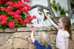 Dos pequeñas hermanas lindas y un gato Imagen de archivo
