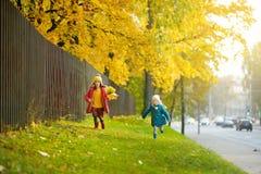 Dos pequeñas hermanas que se divierten junto en parque hermoso del otoño Fotos de archivo