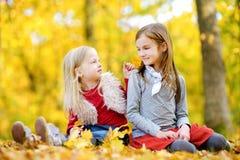 Dos pequeñas hermanas que se divierten junto en parque hermoso del otoño Foto de archivo