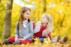 Dos pequeñas hermanas que se divierten junto en parque hermoso del otoño Imagen de archivo