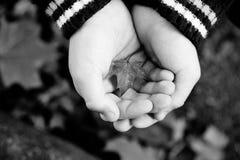 Dos pequeñas manos con una hoja Imagen de archivo