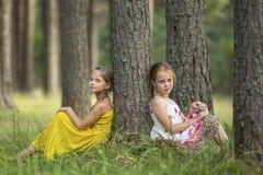 Dos pequeñas muchachas lindas que se sientan cerca del árbol en un verano del bosque del pino Imagen de archivo