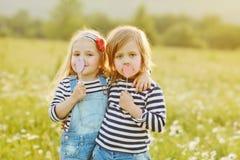 Dos pequeños amigos Imágenes de archivo libres de regalías