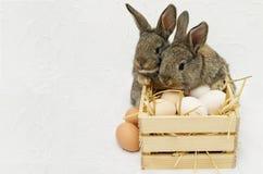 Dos pequeños conejitos de pascua lindos con la caja de madera llena de huevos Imagen de archivo libre de regalías