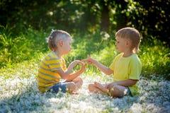 Dos pequeños hermanos juegan en el piedra papel o tijera que se sienta en hierba imagenes de archivo