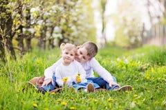 Dos pequeños niños caucásicos lindos, muchacho y muchacha, sentándose en una hierba Fotografía de archivo libre de regalías