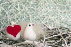 Dos pequeños pájaros blancos en la jerarquía con el corazón rojo en invierno Foto de archivo libre de regalías