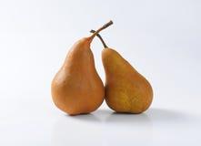 Dos peras maduras de Bosc Fotografía de archivo