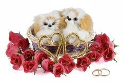 Dos perritos del juguete en una cesta Foto de archivo libre de regalías