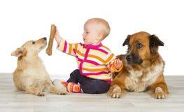 Dos perros que flanquean a un bebé lindo Fotos de archivo