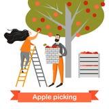 Dos personajes de dibujos animados divertidos están escogiendo manzanas en el jardín Tiempo de cosecha Foto de archivo libre de regalías