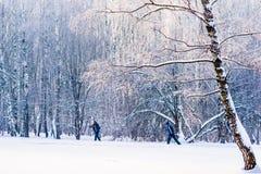 Dos personas irreconocibles van en el esquí a lo largo del para Fotos de archivo