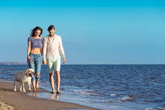 Dos personas jovenes que corren en la playa que se besa y que se sostiene firmemente con el perro Foto de archivo